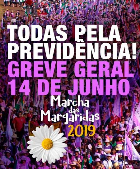 20190614_margaridas